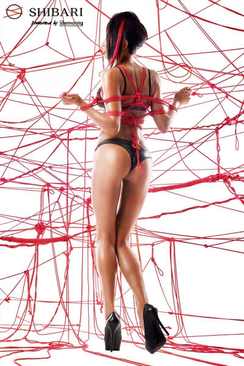 Комплект Asami с веревками для связывания