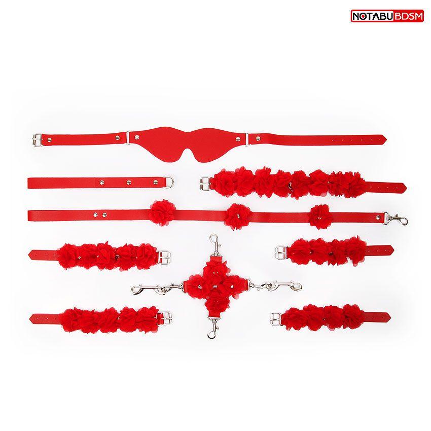Стильный красный набор БДСМ в сумке